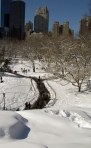Path through the snow to the Time Warner Center